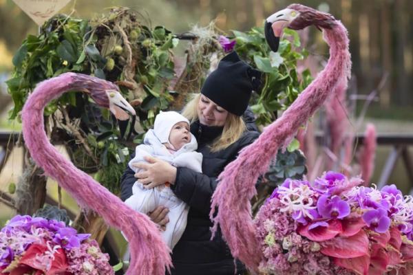 "Фотозона ""Фламинго"""